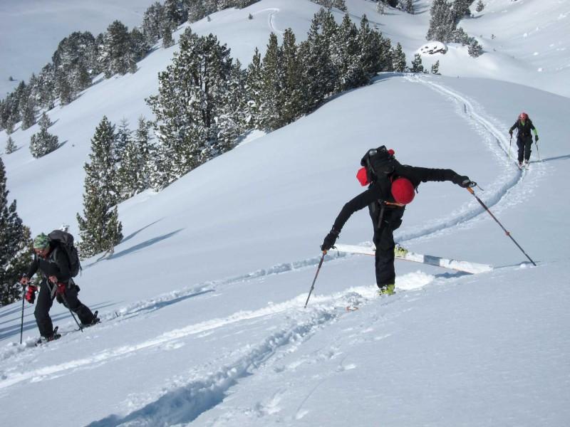 Curs iniciació esquí muntanya